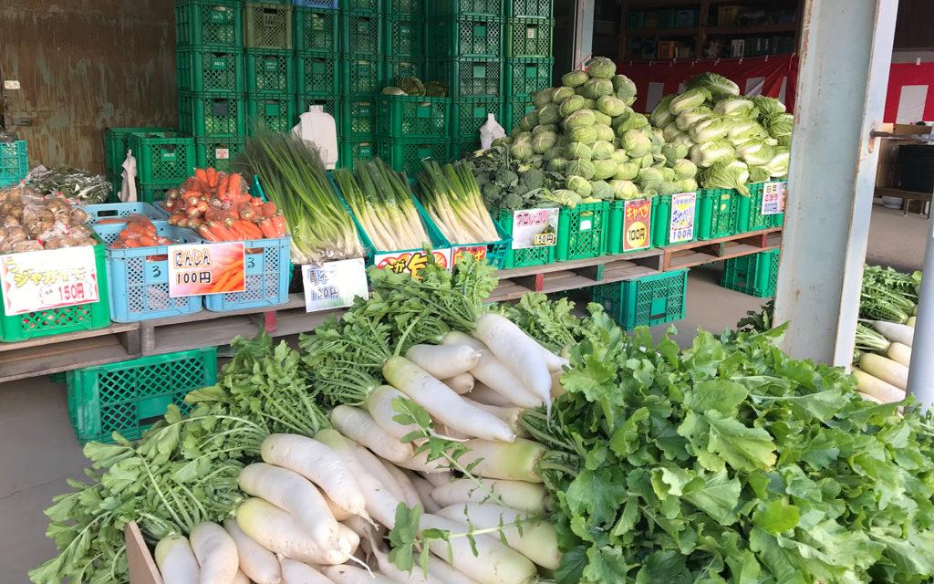 るシオールファームの野菜