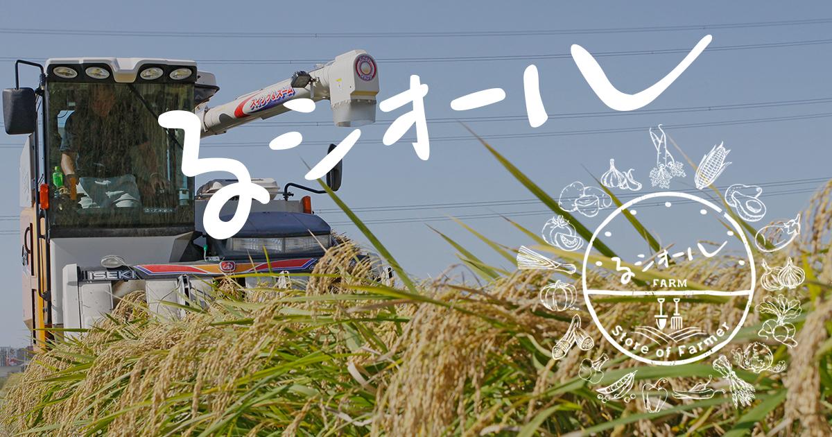 るシオールファーム|滋賀県甲賀市の農場・新鮮な旬の朝採り野菜とお米
